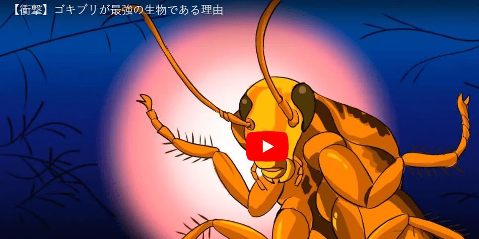 ゴキブリが最強とわかる動画
